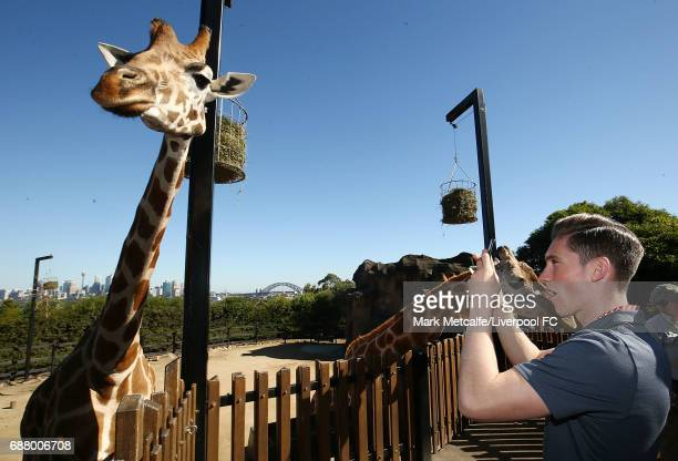 Harry Wilson takes photos of a giraffe during a Liverpool FC player visit to Taronga Zoo on May 25 2017 in Sydney Australia