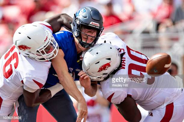 Harry Woodbery of the Eastern Illinois Panthers is hit and fumbles the ball by Armon Watts and Bumper Pool of the Arkansas Razorbacks at Razorback...