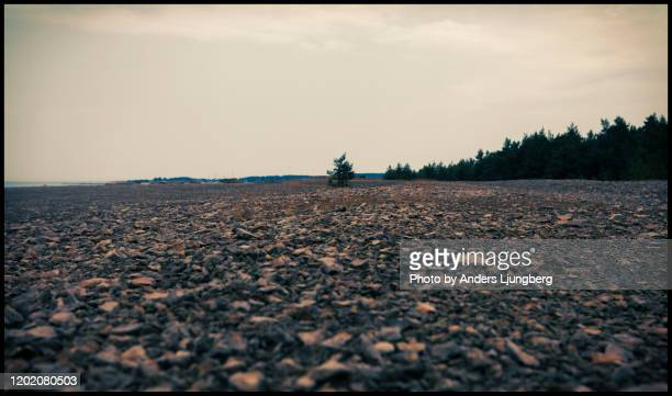 harsh landscape - faro sweden stock pictures, royalty-free photos & images