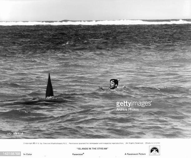 Hart Bochner is in the water with a hammerhead shark heading towards him in a scene from the film 'Islands In The Stream' 1976