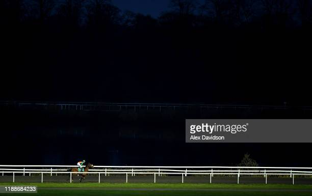 Hart Stopper ridden by Callum Shephard makes its way to the gate during the Matchbook Casino Handicap at Kempton Park on November 19, 2019 in...
