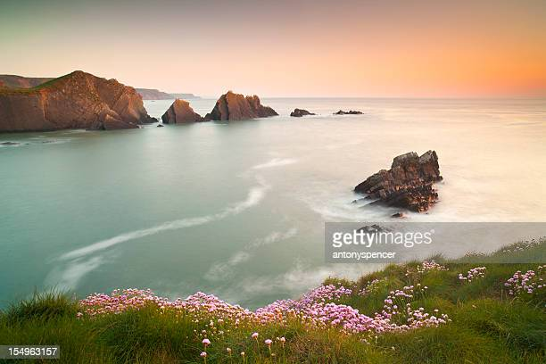 hartland quay sunset, north devon, u.k - coastline stock photos and pictures