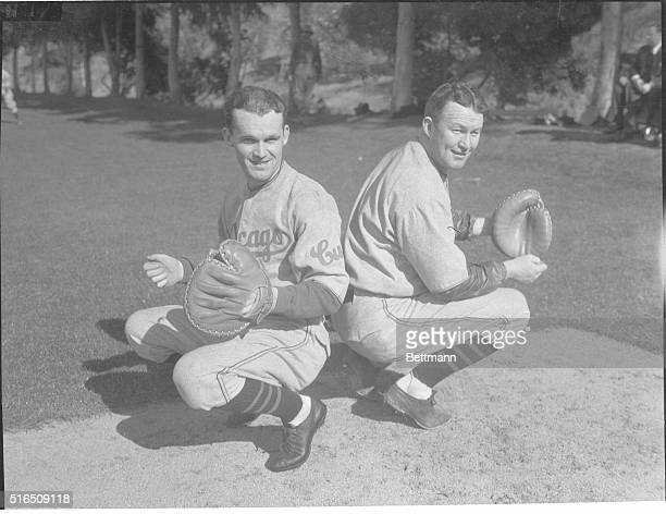 Hartnett Brothers Report to Cubs Charles Leo Hartnett veteran Chicago Cubs catcher reported with his brother Herman also a catcher to the team at...