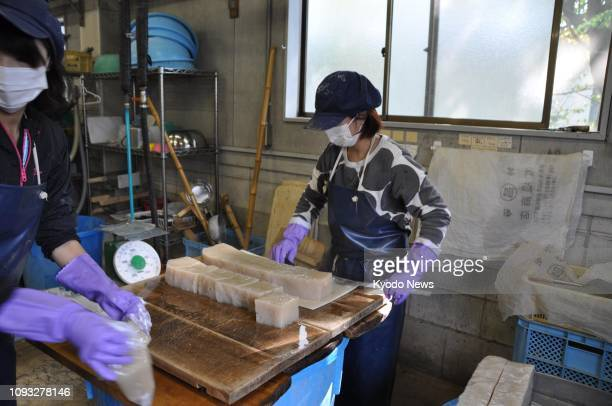 Haruna Endo cuts konnyaku into blocks at her konnyaku factory Kasho in Numata Gunma Prefecture eastern Japan on Oct 29 2018 ==Kyodo