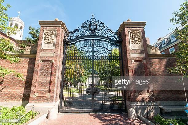 harvard campus - ivy league university stock photos and pictures
