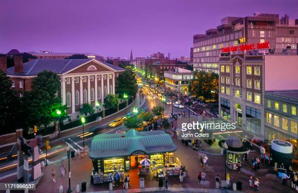 harvard square, cambridge, massachusetts - cambridge massachusetts stock pictures, royalty-free photos & images