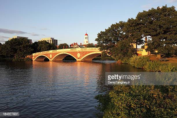 harvard university and the charles river - harvard stock photos and pictures