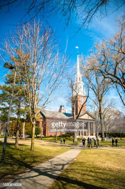 harvard university campus - harvard university stock pictures, royalty-free photos & images