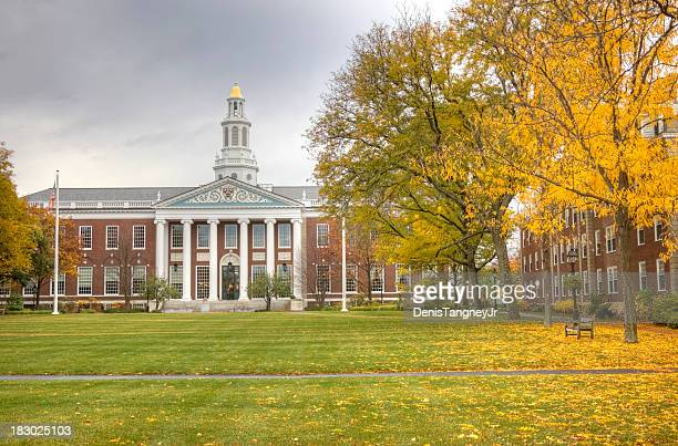 harvard university - cambridge massachusetts stock pictures, royalty-free photos & images