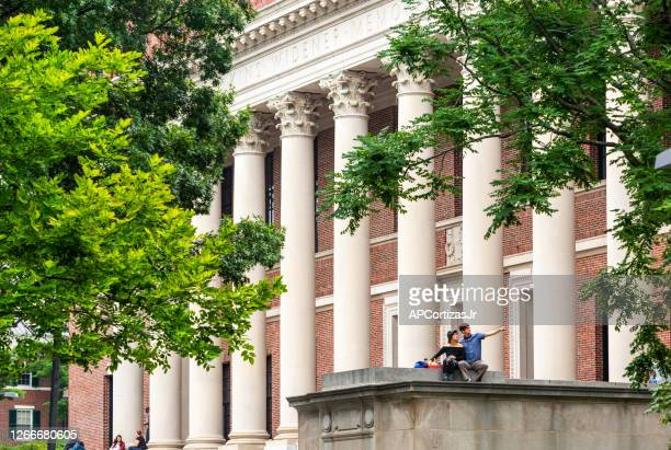harvard university widener memorial library - harvard yard stock pictures, royalty-free photos & images