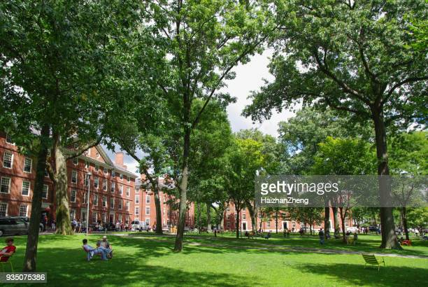 harvard yard - ivy league university stock photos and pictures