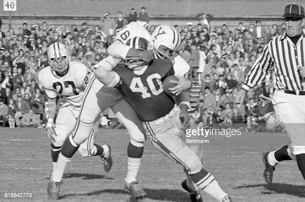 Harvard's Vic Gatto has a bit of trouble finding his way as he drives for yardage during the first quarter action only to be grabbed by Yale's Kurt...