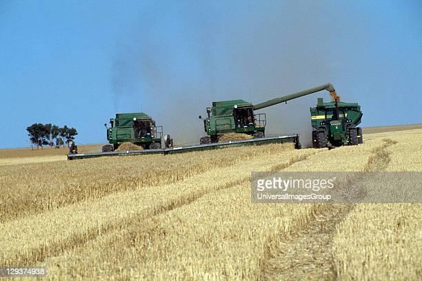 Harvest Australia Nr Perth Mechanised Agriculture Harvesting Wheat