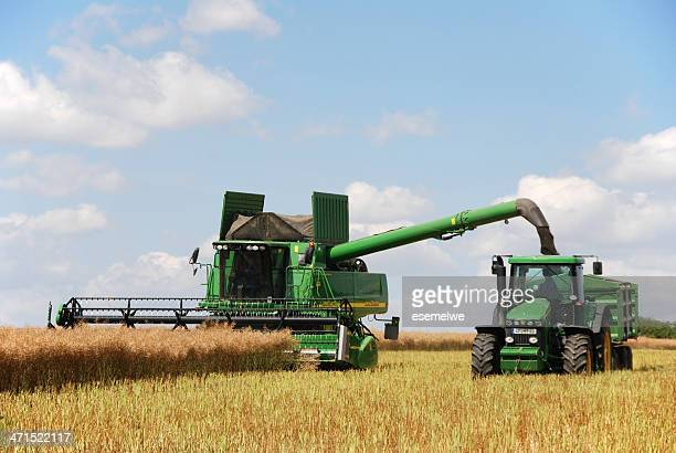 harvest - combine at canola field - john deere stock pictures, royalty-free photos & images