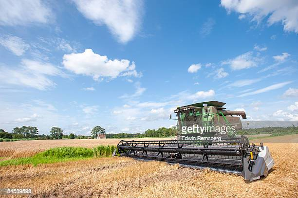 harvest day - princess anne princess royal photos stock pictures, royalty-free photos & images