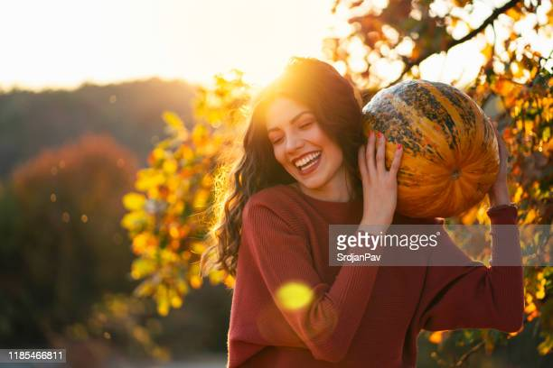 harvest happenings - harvest festival stock pictures, royalty-free photos & images