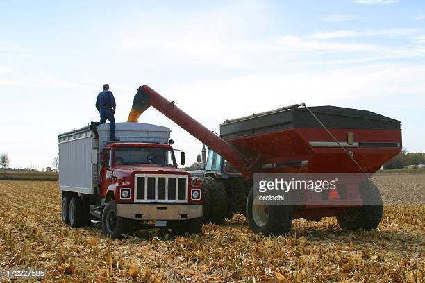 Harvest Hauling