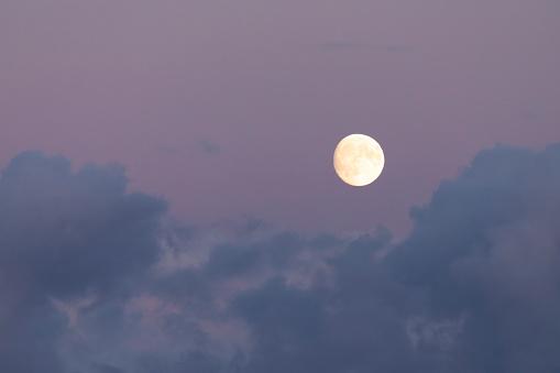 Harvest Moon 1050529920