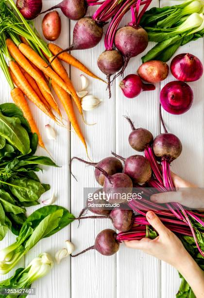 harvest vegetables hand hold beet with