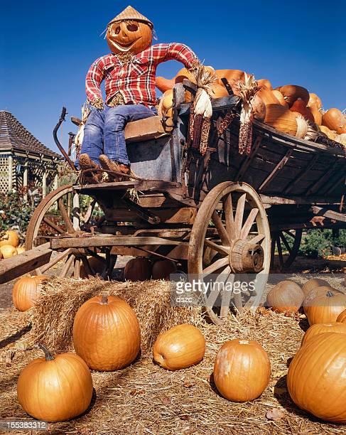 harvest pumpkin man farmer and farm wagon