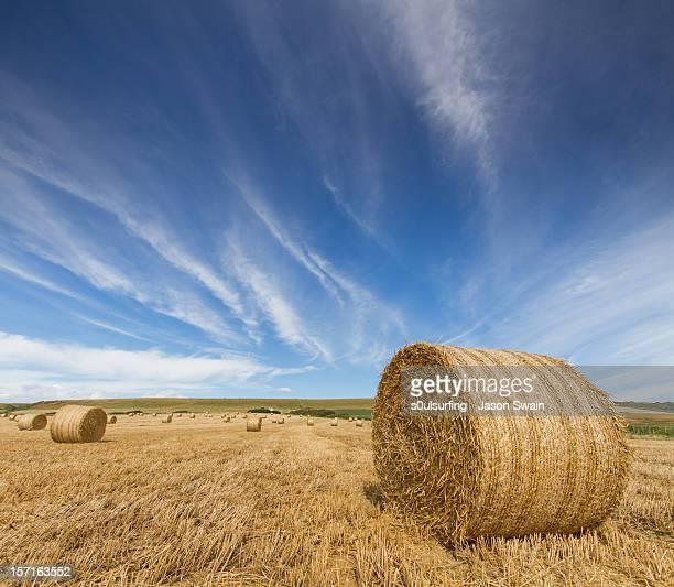 harvest skies - s0ulsurfing foto e immagini stock