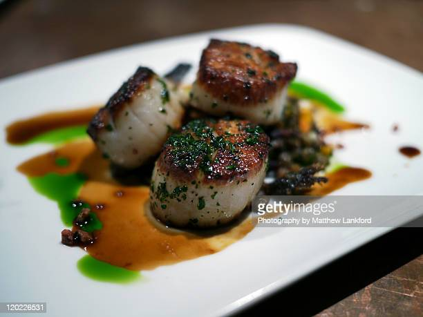 harvest vine, seattle - seared stock photos and pictures