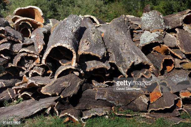 Harvested cork bark awaits collection on October 4 2016 near Coimbra in central Portugal Portugal has some 34% of the world's Quercus Suber cork oak...