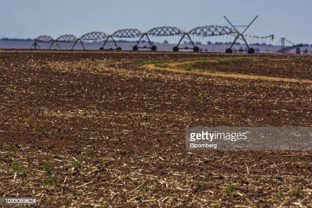A harvested corn field stands on the Ehlerskroon farm outside Delmas in the Mpumalanga province South Africa on Thursday Sept 13 2018 A legal battle...