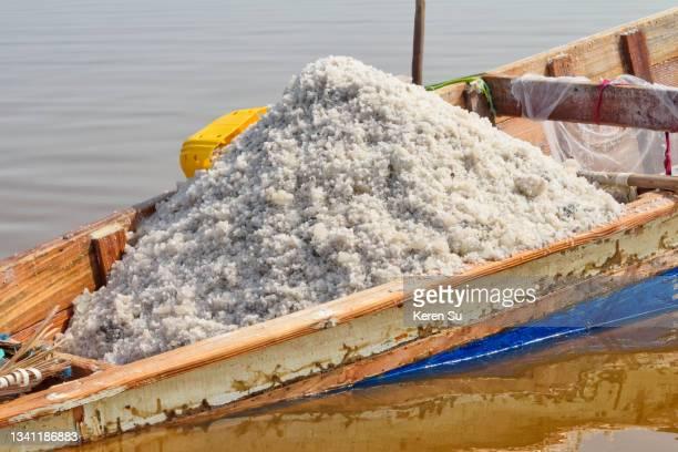 harvested salt on boat on lake retba (pink lake) - lac rose photos et images de collection