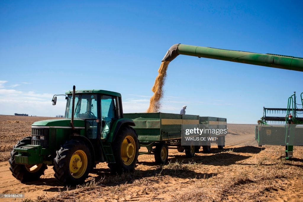 Harvested soya beans are poured from the combine harvester into a wagon that a tractor will transport to the local silo's near Bothaville on May 16, 2018.