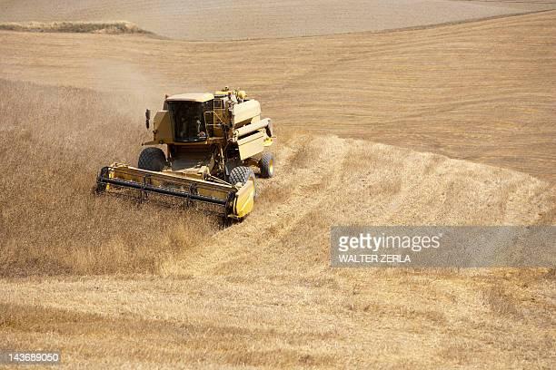 Harvester at work in crop fields