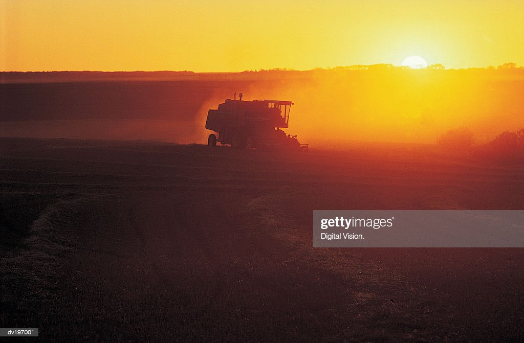 Harvester in field at sunset : Stock Photo