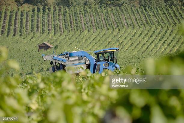 harvester in vineyard - focus on background ストックフォトと画像