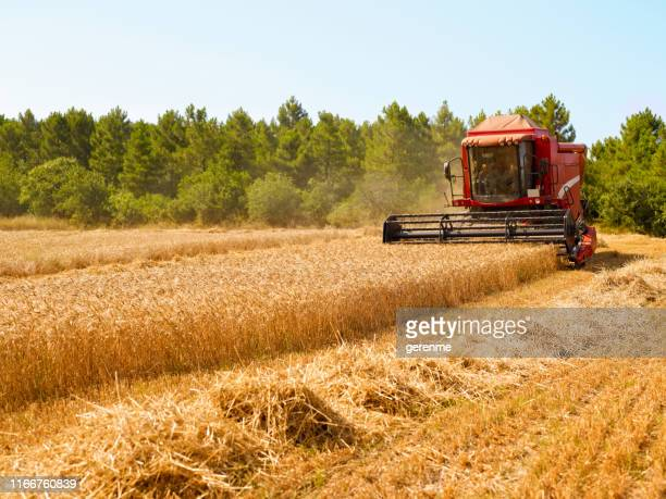 harvester - agricultural machinery stock pictures, royalty-free photos & images