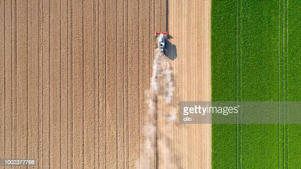 harvesting a wheat field, dust clouds - overhead view stock pictures, royalty-free photos & images