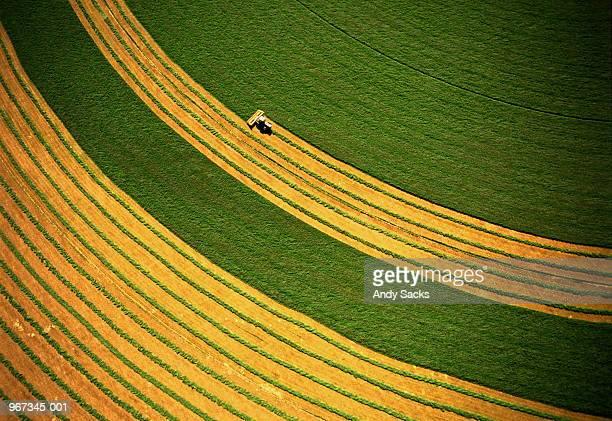 Harvesting alfalfa crop,aerial view