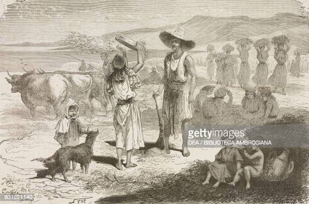 Harvesting and threshing corn drawing by Duhousset from Excursion in Great Kabylia Notes and sketches collected between the Mediterranean sea and the...