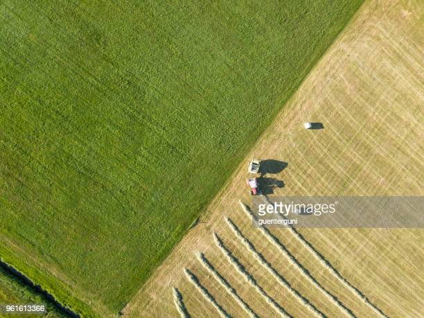 Harvesting hay in springtime, Upper Austria