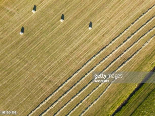 Récolte de foin au printemps, Haute-Autriche