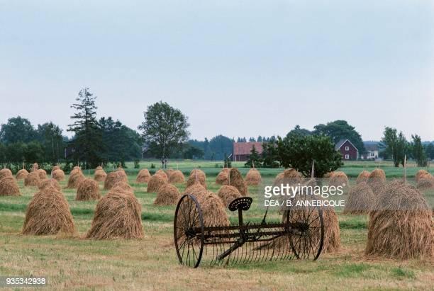 Harvesting hay near Karlstad Svealand Sweden