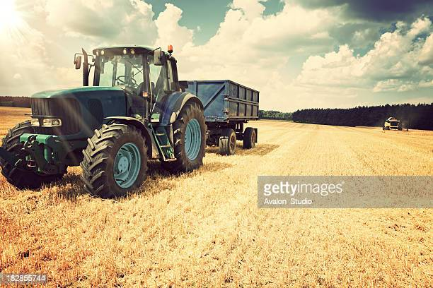 harvesting - tractor stock pictures, royalty-free photos & images