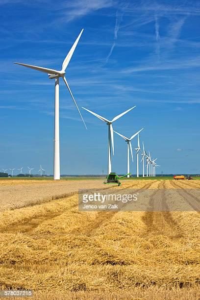 harvesting wheat and wind - biddingshuizen stockfoto's en -beelden