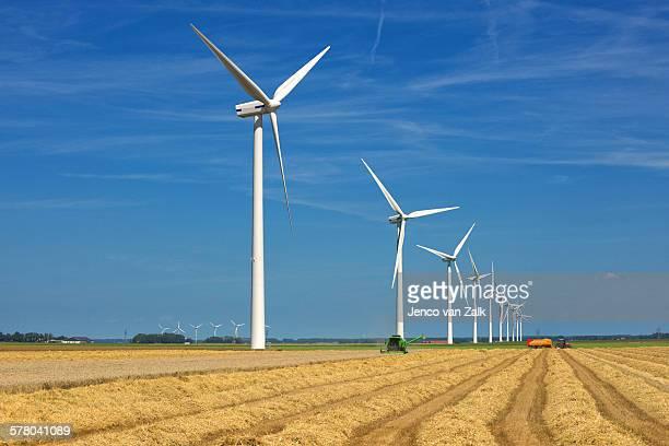 harvesting wind and wheat - biddingshuizen stockfoto's en -beelden