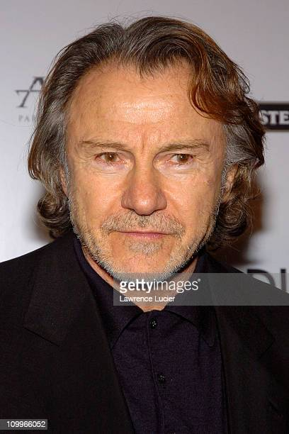 Harvey Keitel during After The Sunset New York Screening at Ziegfeld Theater in New York City, New York, United States.