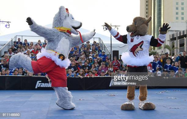 Harvey the Hound of the Calgary Flames and Howler the Coyote of the Arizona Coyote perform during the PreGame Mascot Showdown at Amalie Arena on...