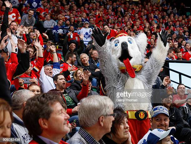 Harvey the Hound pumps up the crowd during the game between the Calgary Flames and the Toronto Maple Leafs at Scotiabank Saddledome on February 9...
