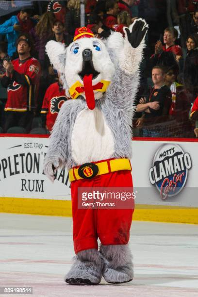 Harvey the Hound the Calgary Flames mascot greets the fans in a NHL game against the Vancouver Canucks at the Scotiabank Saddledome on December 09...