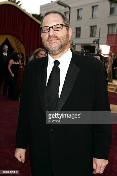 Harvey Weinstein during The 77th Annual Academy Awards Executive Arrivals at Kodak Theatre in Hollywood California United States