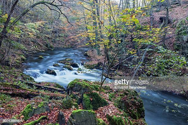 Harz Landscape in Autumn