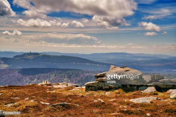 harz national park -brocken / goehte / faust - metabolic syndrome stock pictures, royalty-free photos & images
